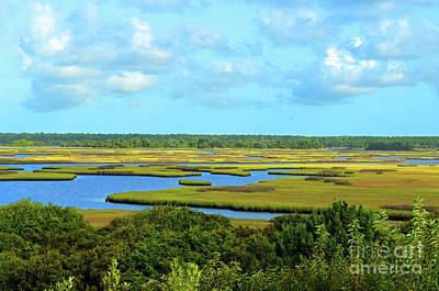 Digital Art - Topsail Island Marshland by Eva Kaufman