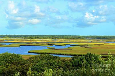 Digital Art - Topsail Island Marshland by Eva Kaufman