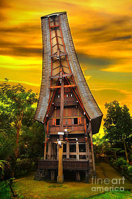 Watercolor Dragonflies - Toraja Architecture by Charuhas Images