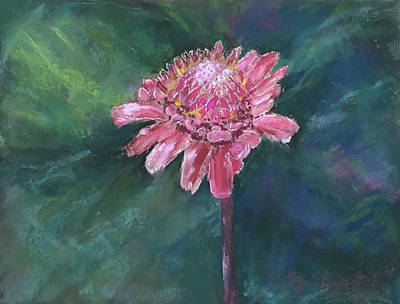 Painting - Torch Ginger by Mary Benke