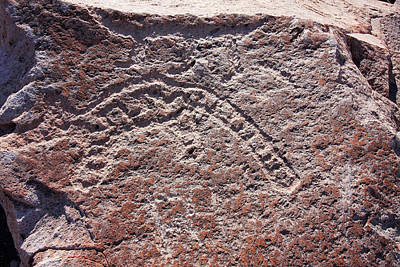 Photograph - Toro Muerto Petroglyph 27 by Aidan Moran