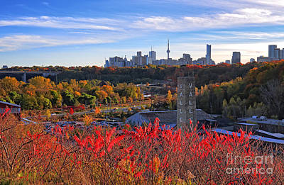 Photograph - Toronto Skyline From Don Valley by Charline Xia