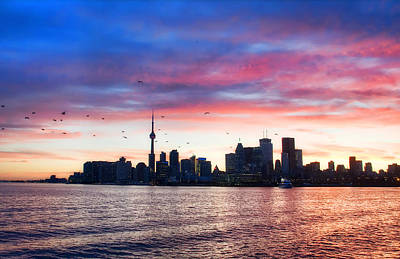 Photograph - Toronto Skyline by Tammy Wetzel