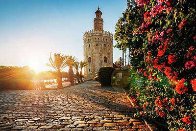 Photograph - Torre Del Oro, Seville, Spain by Alexandre Rotenberg