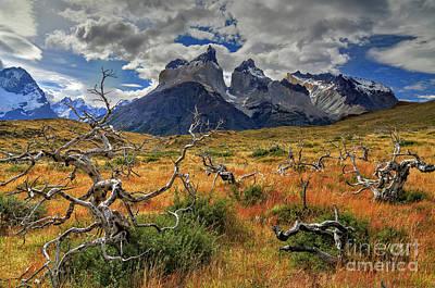 Torres Del Paine 18 Art Print