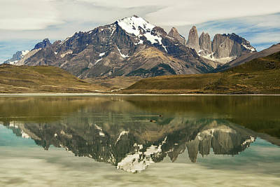 Photograph - Torres Del Paine by Alan Toepfer