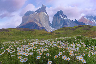 Photograph - Torres Del Paine National Park by Giovanni Allievi