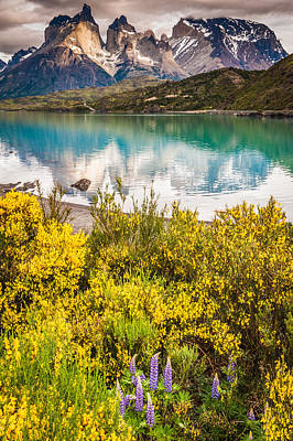 Lake Photograph - Torres Del Paine Reflection - Patagonia Photograph by Duane Miller