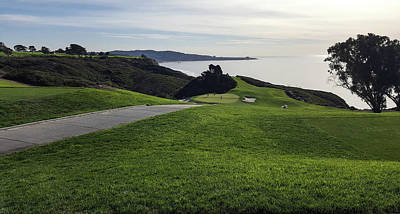Photograph - Torrey Pines #15 by William Kimble