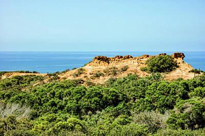 Torrey Pines California - Chaparral On The Coastal Cliffs Art Print