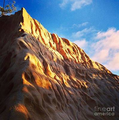 Photograph - Torrey Pines State Reserve by Denise Railey