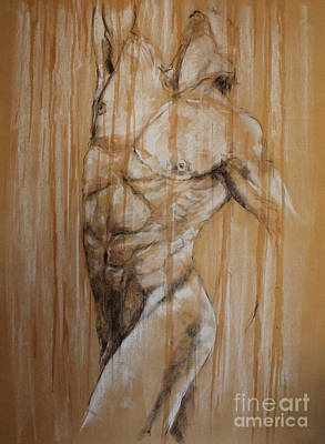 Drawing - Torso by Debora Cardaci