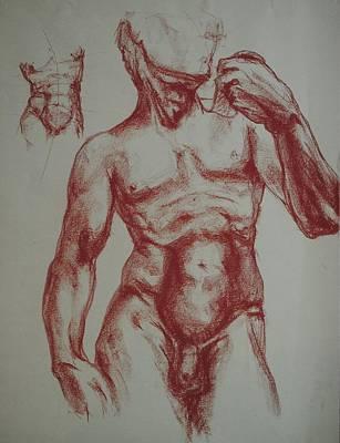 Torso Of  Michelangelo   David  Art Print by Chris  Riley