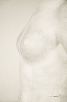 Photograph - Torso Suggested by Cheri Randolph