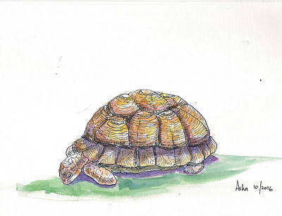 Painting - Tortoise by Asha Sudhaker Shenoy