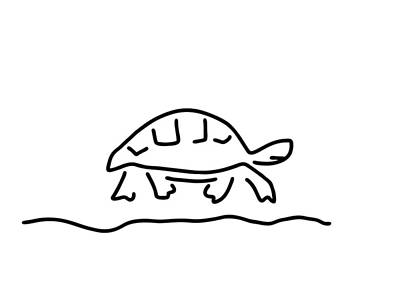 Animals Drawings - Tortoise Reptiles Tank by Lineamentum