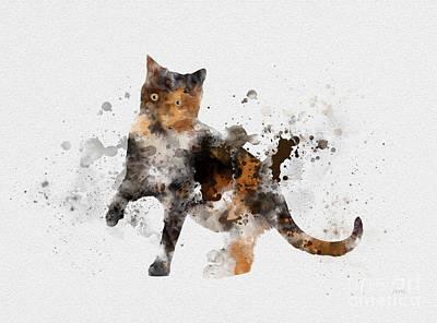 Kittens Mixed Media - Tortoiseshell Cat by Rebecca Jenkins