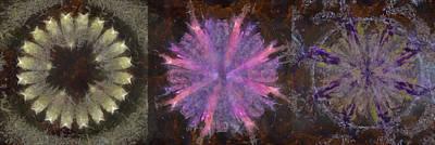 Totalitizer Peeled Flower  Id 16165-060903-72320 Art Print