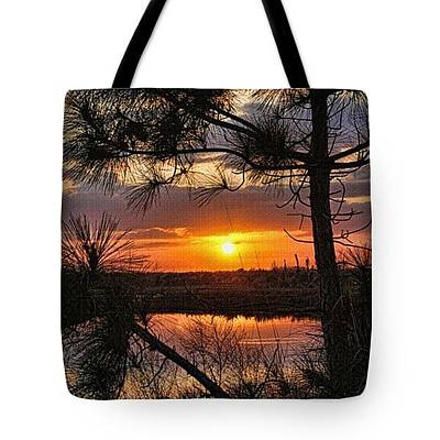 Photograph - Tote Bag - Florida Pine Sunset by HH Photography of Florida