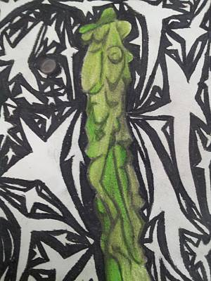 Conservatory Drawing - Totem Pole Cactus 2 by William Douglas