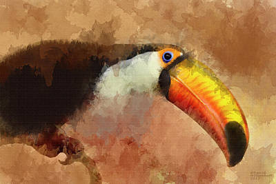 Toucan Mixed Media - Toucan Large Canvas Art, Canvas Print, Large Art, Large Wall Decor, Home Decor, Wall Art by David Millenheft