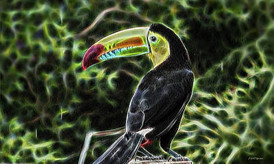 Digital Art - Toucan In Fractals by Ericamaxine Price