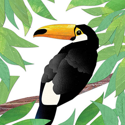 Toucan Mixed Media - Toucan by Kendra Shedenhelm