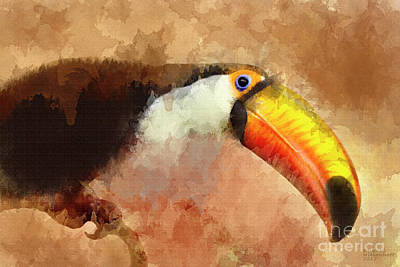 Mixed Media - Toucan Large Canvas Art, Canvas Print, Large Art, Large Wall Decor, Home Decor, Wall Art by David Millenheft