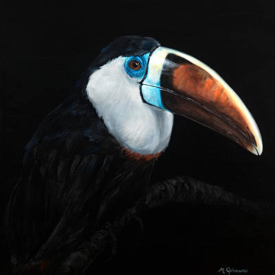 Toucan Art Print by Matt Johnson