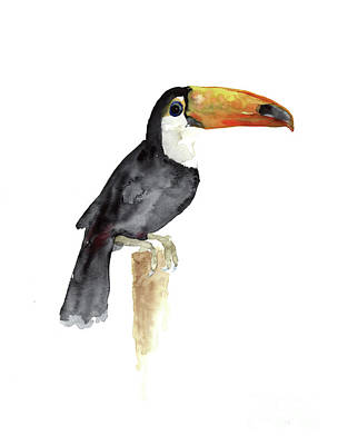 Toucan Watercolor Painting Tropical Bird Kids Playroom Art Prin Art Print