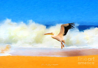 Painting - Touch Down by Chris Armytage