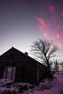 Photograph - Touch Of Pink - Wilkes Farm by Desmond Raymond