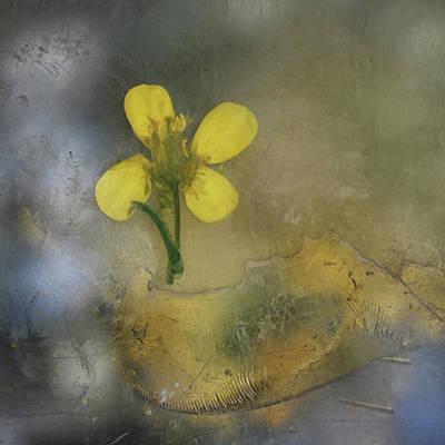 Photograph - Touch by Viggo Mortensen