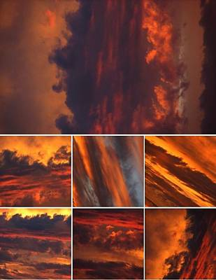 Photograph - Touched By Fire by Chris Dunn