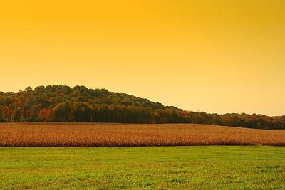 Freehold Photograph - Touched By Golden Light - Battlefield Orchards by Angie Tirado
