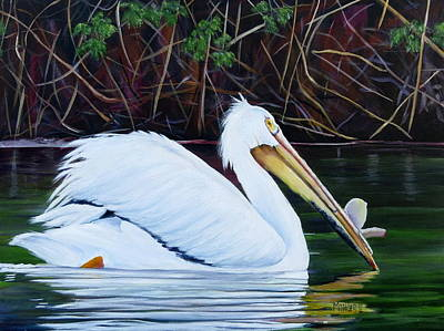 Painting - Touring Pelican by Marilyn McNish