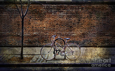 Photograph - Tourist 10 Bicycle by Craig J Satterlee