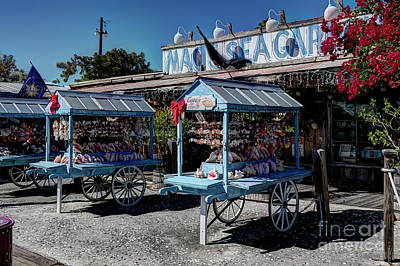 Photograph - Tourist Souvenir Shell Carts by Ules Barnwell