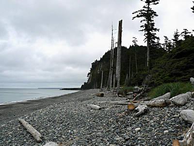 Photograph - Tow Hill Haida Gwaii Bc by Barbara St Jean
