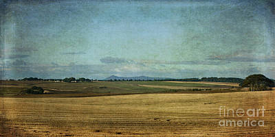Photograph - Towards Bennachie by Liz  Alderdice