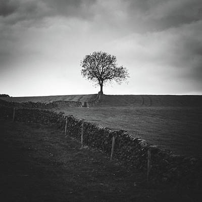 Peak District Photograph - Towards The Tree by Chris Dale