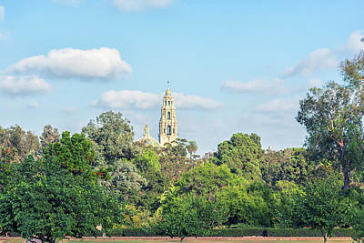 Photograph - Tower Above The Trees by Joseph S Giacalone