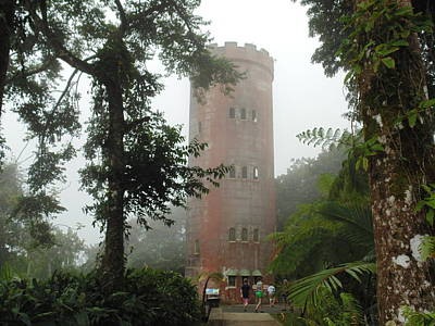 Yokahu Tower In Rainforest Art Print by Dotti Hannum