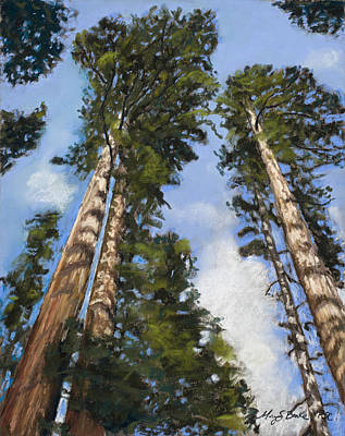 Painting - Towering Sequoias by Mary Benke