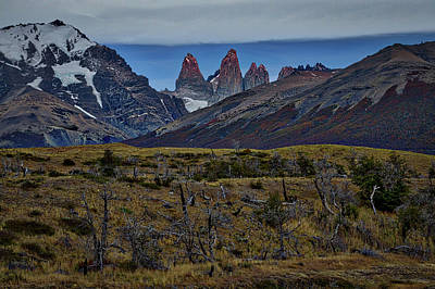 Photograph - Towers Of Paine - Patagonia by Stuart Litoff