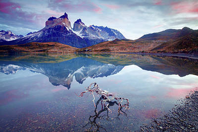 Photograph - Towers Of The Andes by Phyllis Peterson