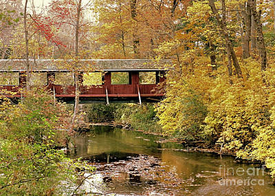 Photograph - Town Brook In Autumn by Janice Drew