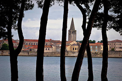 Photograph - Town Of Porec Pine Trees View by Brch Photography
