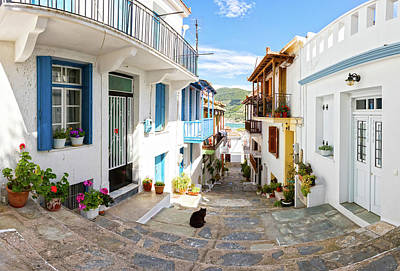 Town Of Skopelos Art Print by Evgeni Dinev