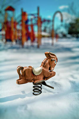 Photograph - Toy Mule by Yo Pedro
